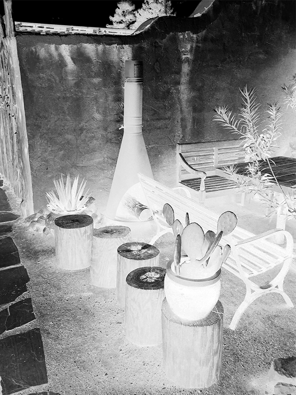 marilyn carren courtyard neg