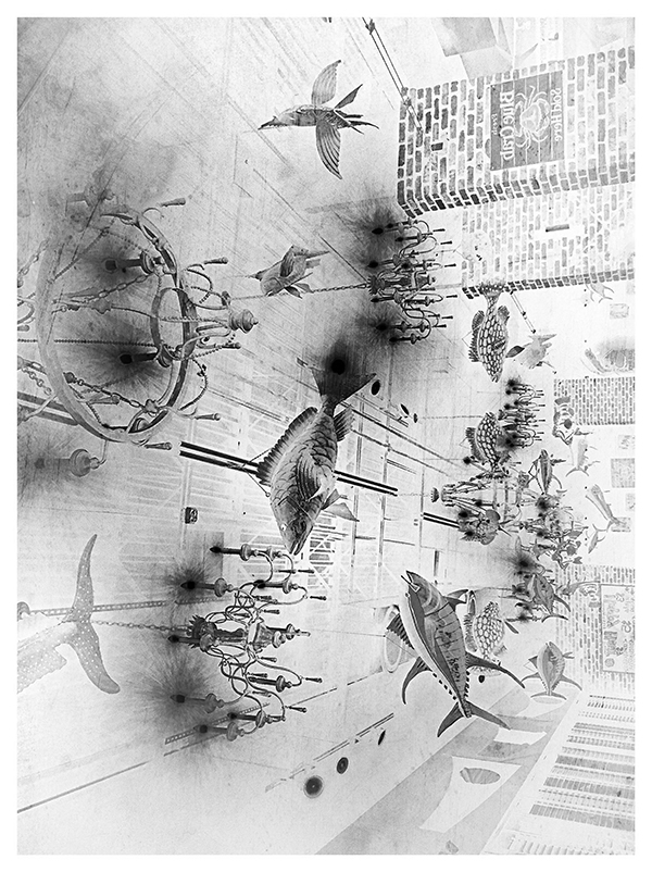 marilyn carren fish ceiling neg